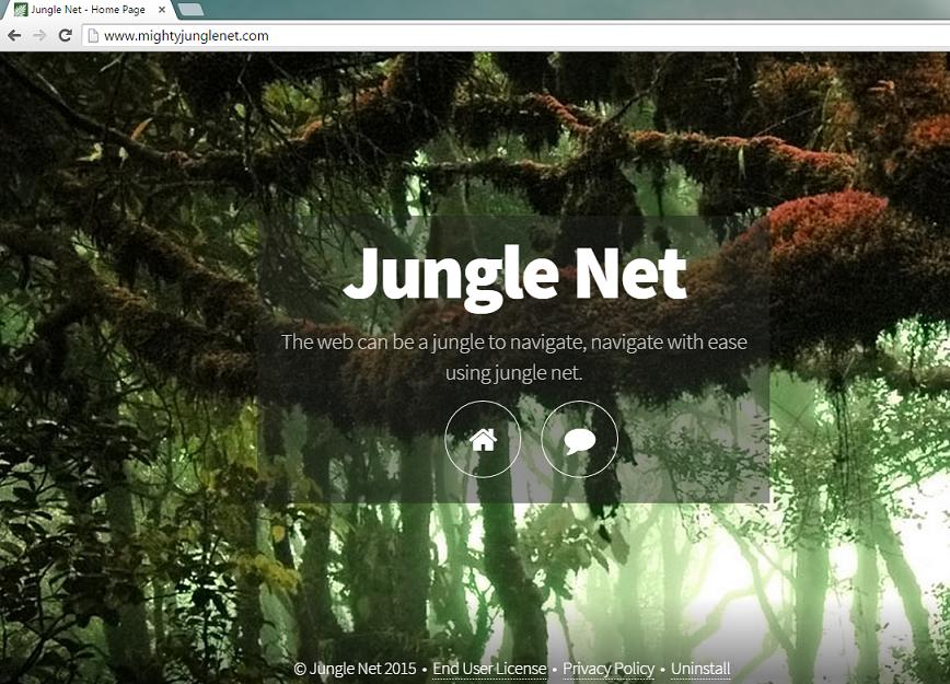 jungle-net-removal
