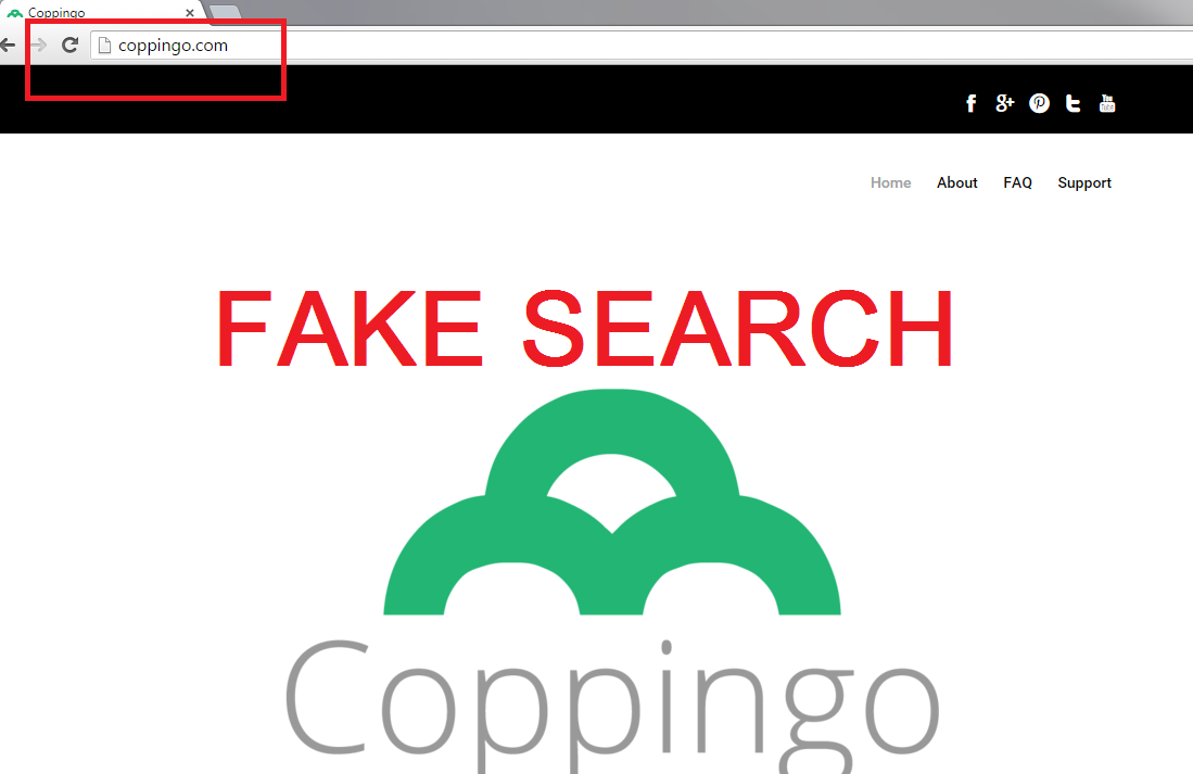 Coppingo.com-