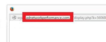 Adnetworkperformance.com-