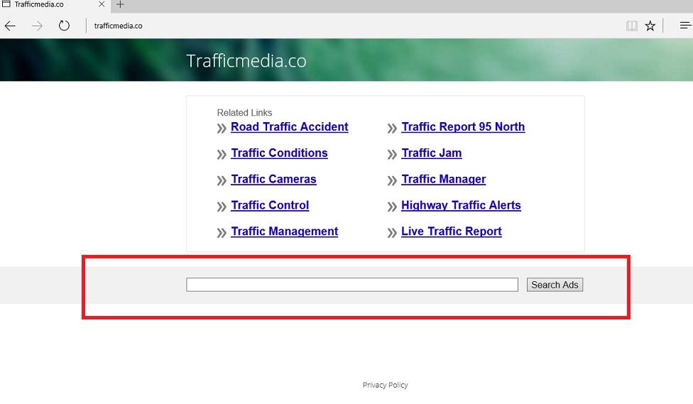 trafficmedia.co-