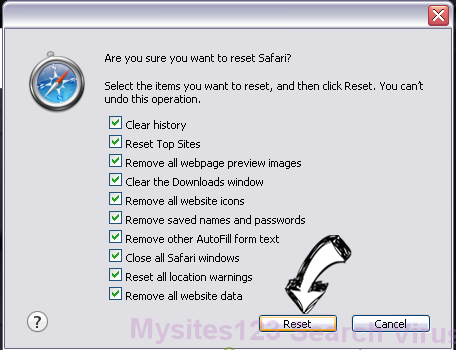 My Quick Converter Virus Safari reset