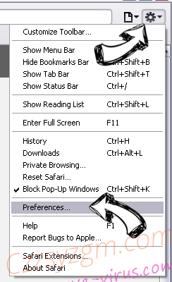 Ozip Search Safari menu