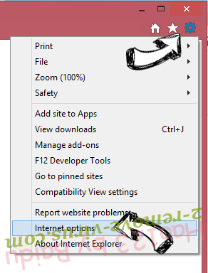 FileShareFanatic Toolbar IE options