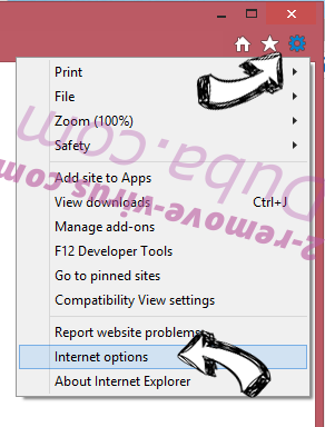 Easy PDF Virus IE options