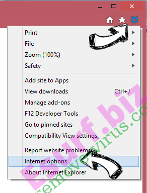 Download Converter Now IE gear