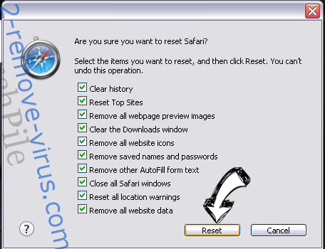 Search Manager virus Safari reset
