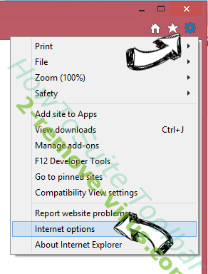 HowToSuite Toolbar IE options