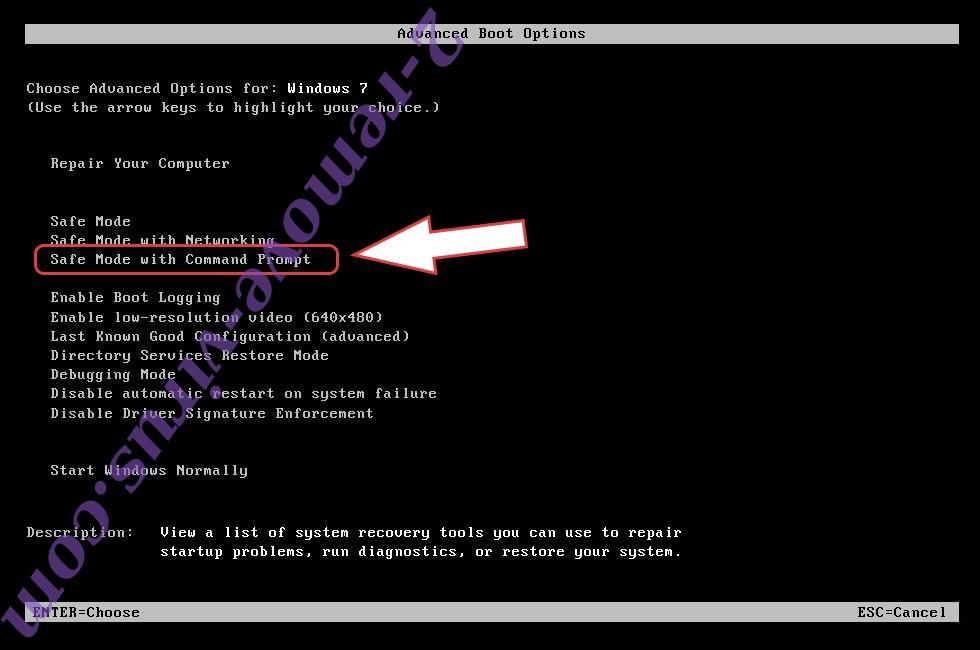 Remove Insta Ransomware - boot options