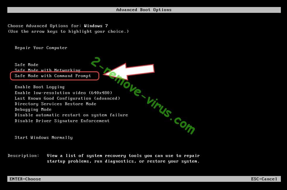Remove PremierOpinion virus - boot options