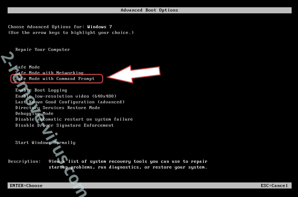 Remove .sage File Virus - boot options