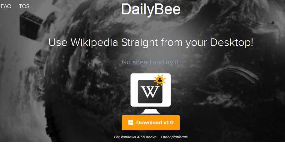 dailybee