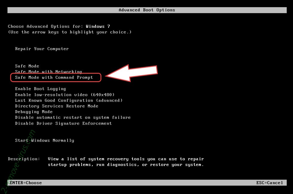 Remove Gand Crab Virus - boot options