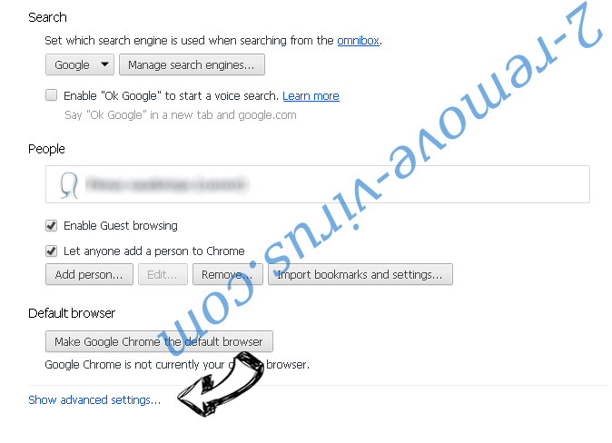 MetroWhiz Toolbar Chrome settings more