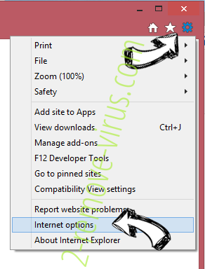 MetroWhiz Toolbar IE options