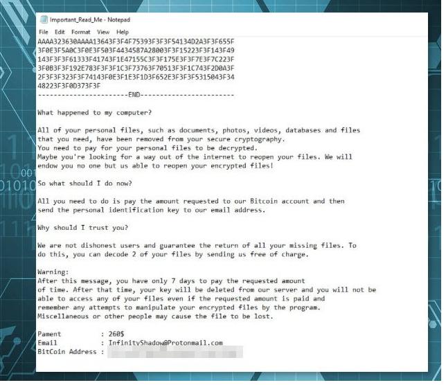 Supprimer InfinityShadow ransomware virus