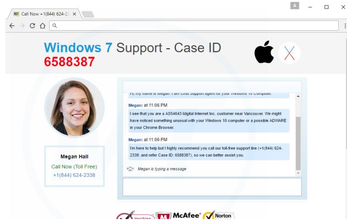 Call Support For Windows