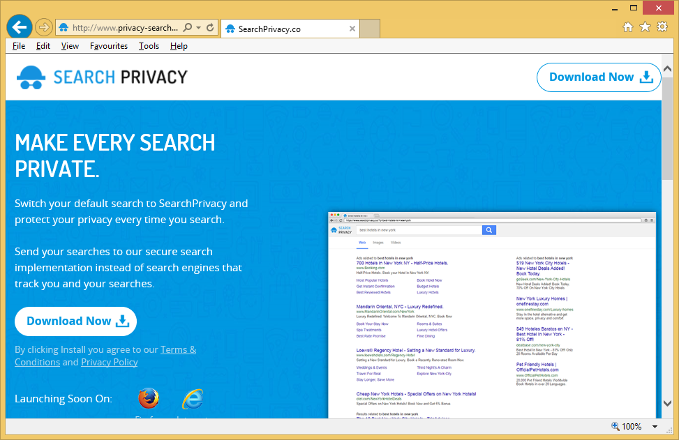 Privacy-Search