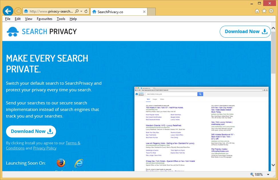 Privacy-Search