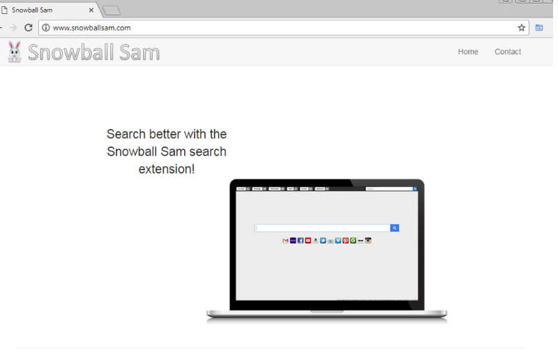 Search.snowballsam.com を削除します。