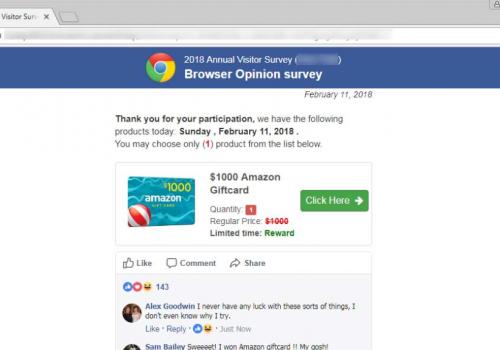 2018 Annual Visitor Survey scam