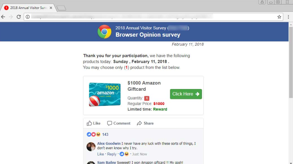 2018 Annual Visitor Survey scam