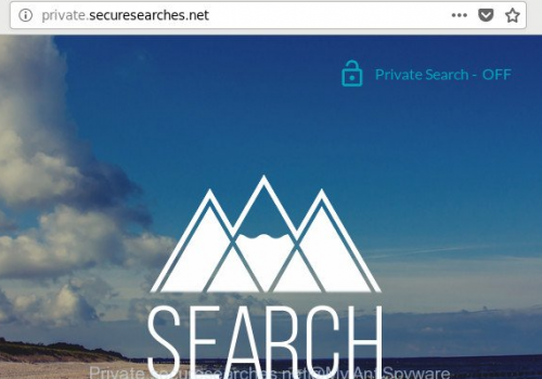 How to remove Private.securesearches.net