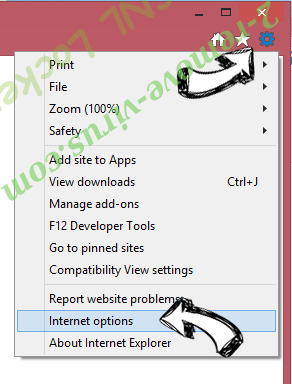 LiveSupport Toolbar IE options