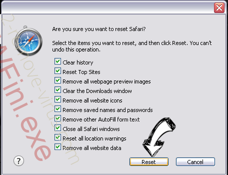 2solo.biz Safari reset