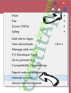 Pony virus IE options
