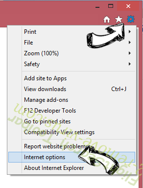 FreeShoppingTool Toolbar IE options