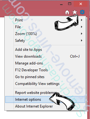 PDFSearchly IE options