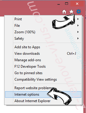 LiveRadioSweeper Toolbar IE options