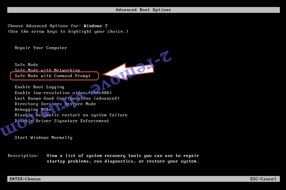 Remove .aef Files virus - boot options
