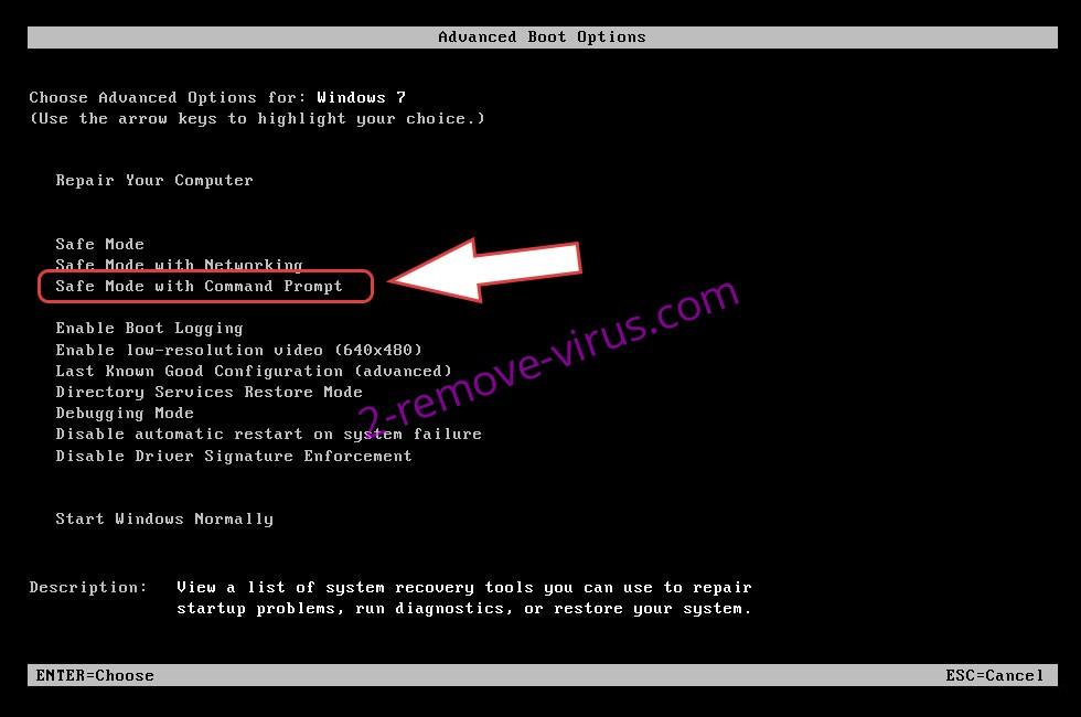 Remove Protomolecule ransomware - boot options