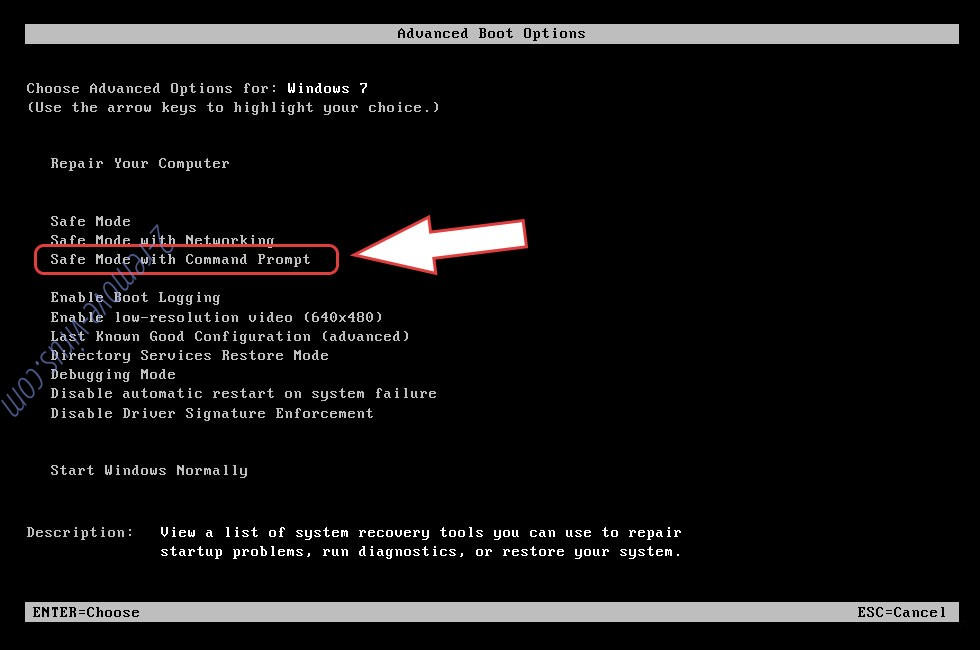 Remove .Mercury File Virus - boot options