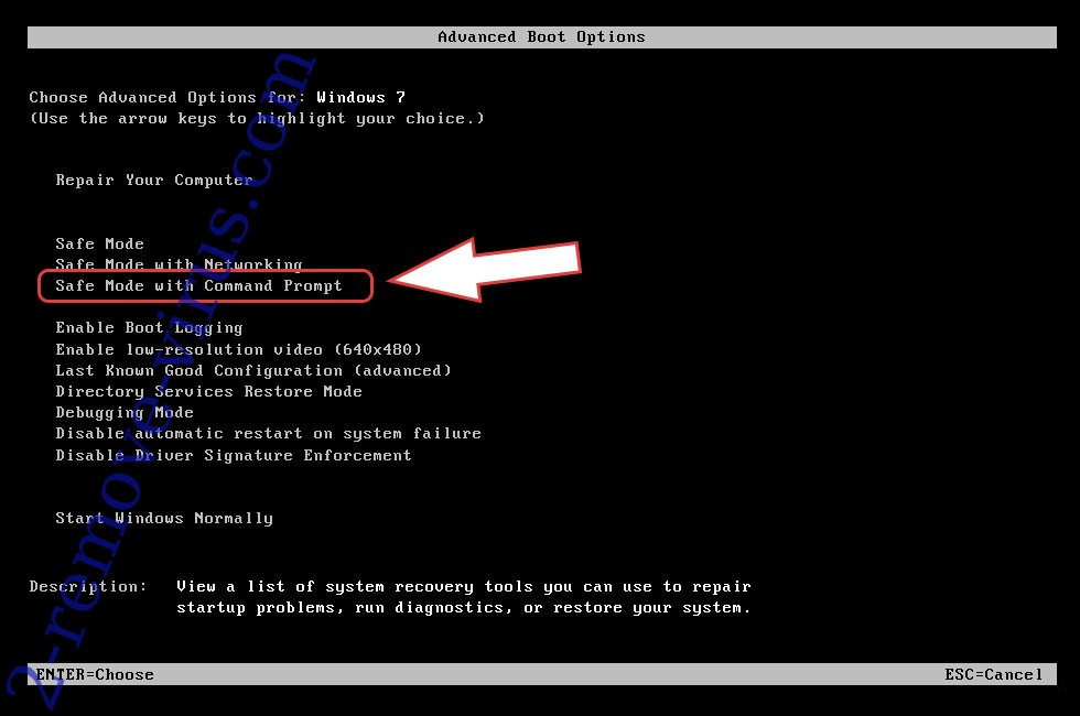 Remove pulsar1 File Virus - boot options