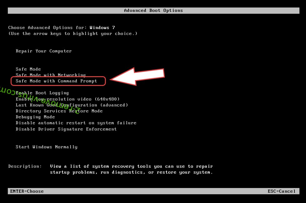 Remove WORMCRYPT0R Virus - boot options