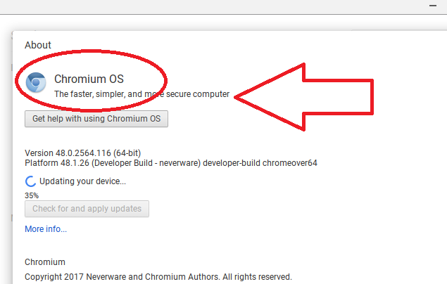 Rogue Chromium Browsers