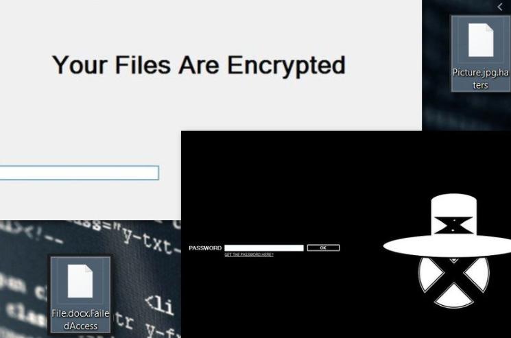 Stupid ransomware virus