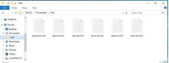 CR1 files ransomware