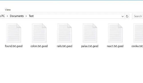 เอา .GESD extension ransomware