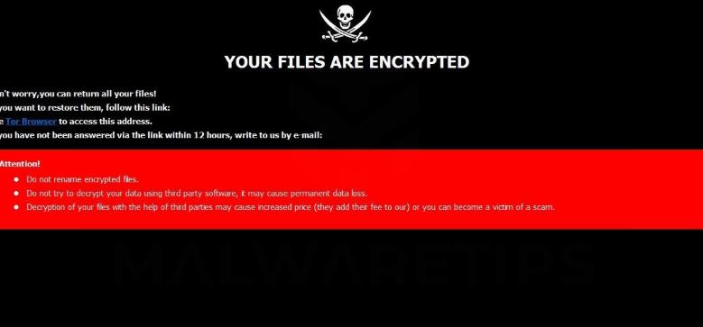 Rober Ransomware