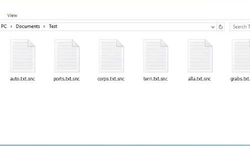 Καταργήσετε Snc ransomware