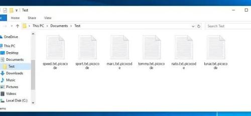 Odstranit .Picocode file