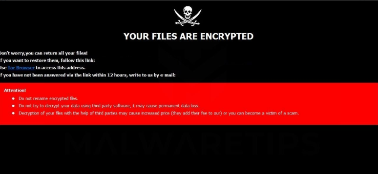 YKUP ransomware