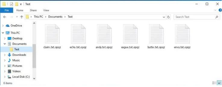 opqz file virus