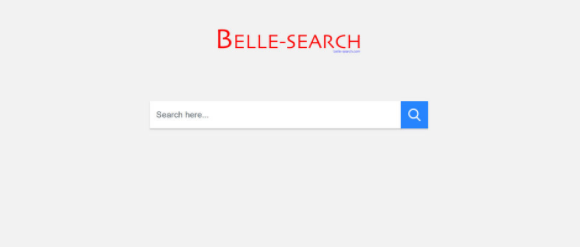 Belle-search