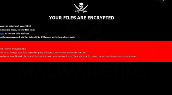 Bmd ransomware