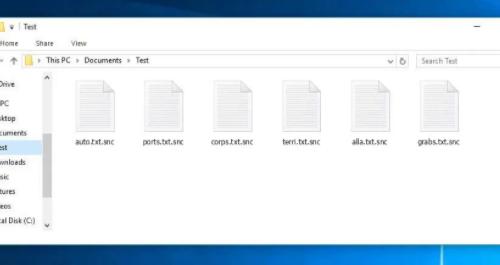 Remove Gvlbsjz ransomware