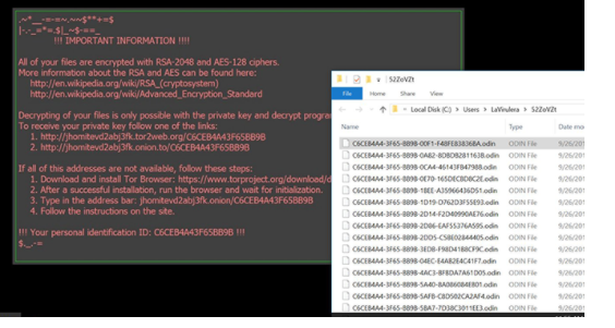 Hexadecimal ransomware